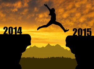 What financial goals did you achieve in 2014?